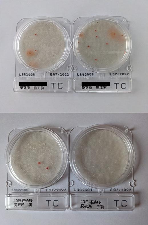 落下菌測定(一般細菌)